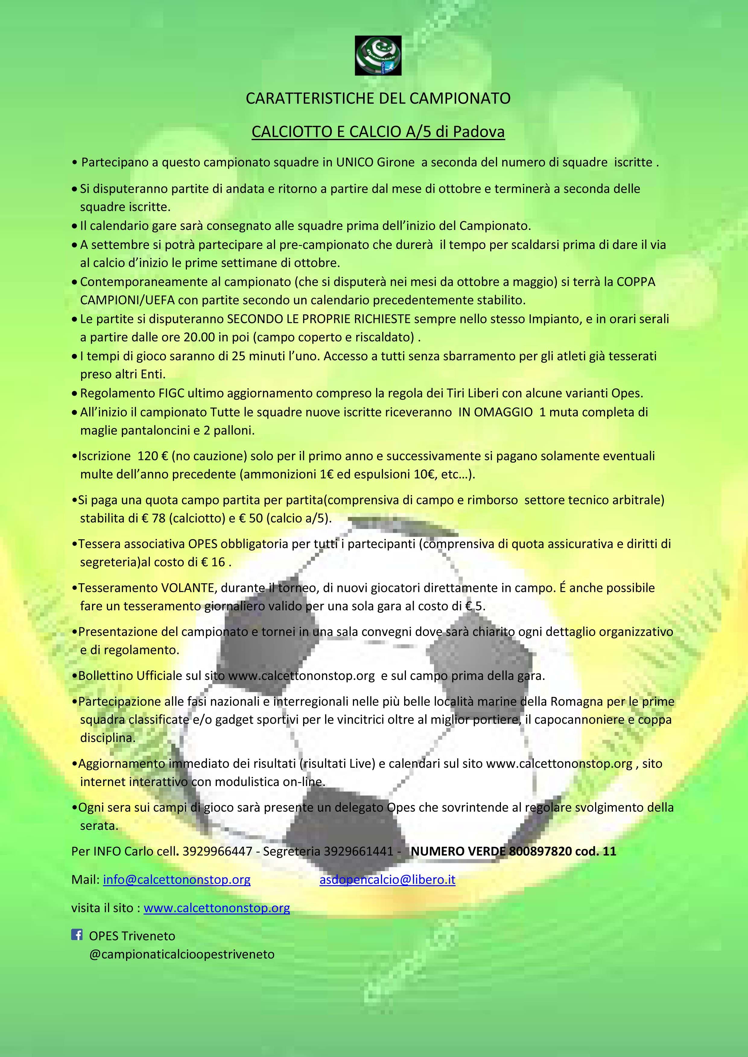 Calendario Torneo A 7 Squadre.Home